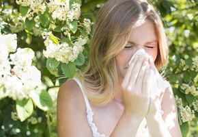 Скажи аллергии