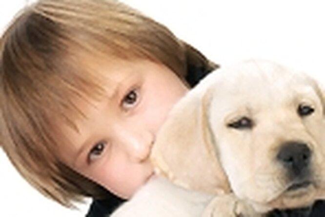 Если ребенок просит собачку...