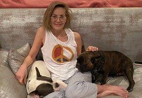 «Это Спарта!» 62-летняя Шерон Стоун отдыхает у бассейна в маске гладиатора и бикини