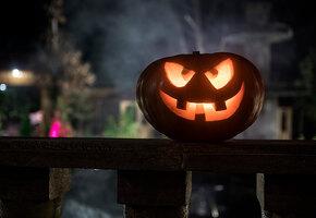 Художник перепугал всю округу, слишком реалистично украсив двор к Хэллоуину