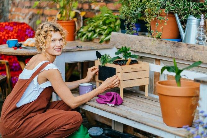 Комары, жара иотсутствие света: 7 способов решить дачные проблемы