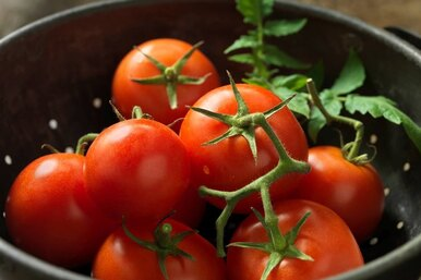 13 рецептов спомидорами: мармелад, конфитюр, аджики, соусы, хренодер