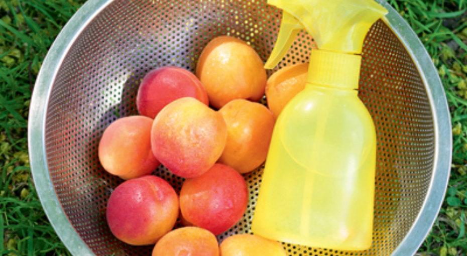 Как сохранить фрукты иовощи свежими