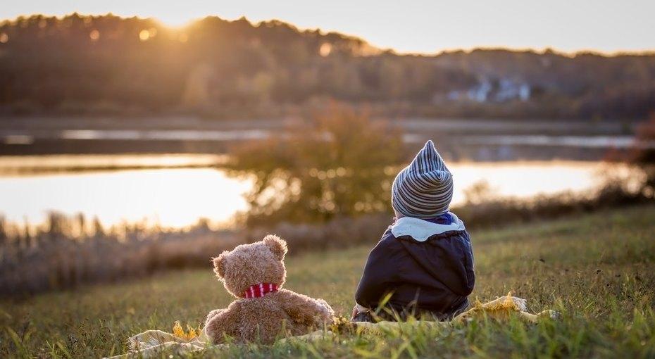 Трехлетний мальчик две ночи провел влесу ивыжил благодаря медведю