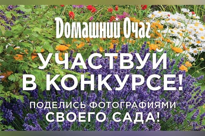 Гордитесь своим садом? Участвуйте вконкурсе ивыигрывайте призы!