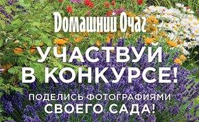 Гордитесь своим садом? Участвуйте в конкурсе и выигрывайте призы!