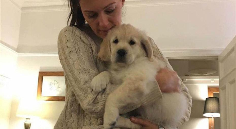 Мальчик придумал, как утешить учительницу, укоторой умерла собака