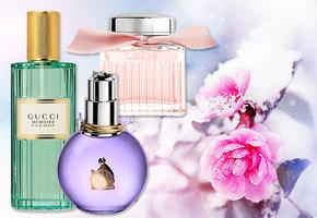 Холода и цветы: неожиданные ароматы для зимы