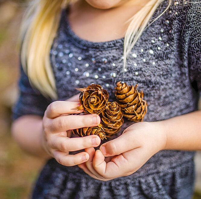 Девочка с шишками в руках