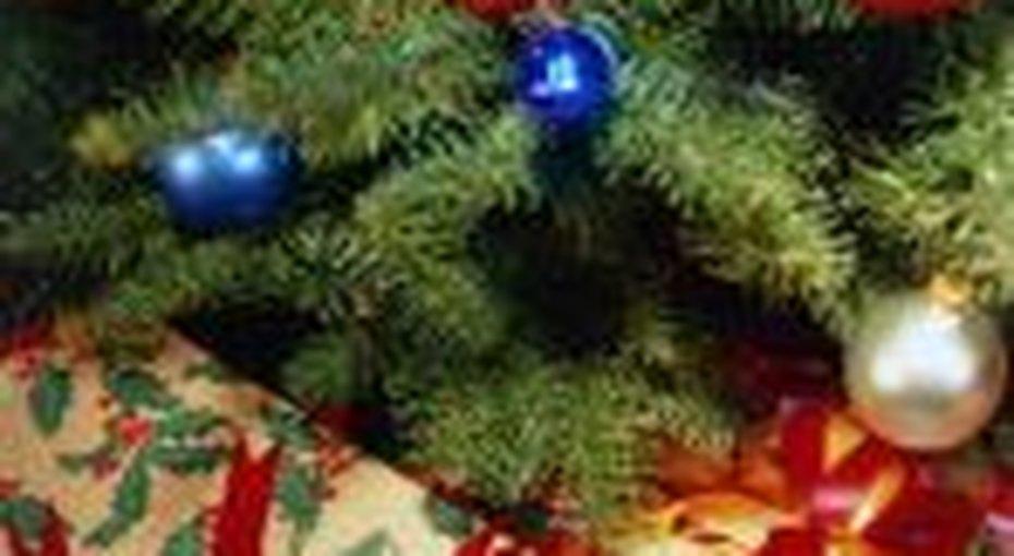 Развод - подарок кРождеству
