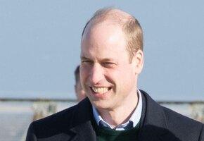 Эксперт: принц Уильям может стать последним монархом Великобритании