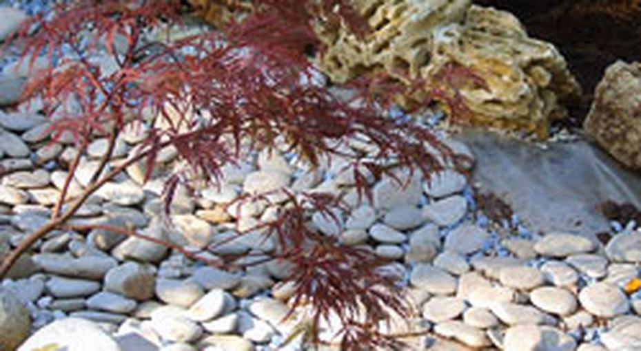 Садовая философия> Японский сад