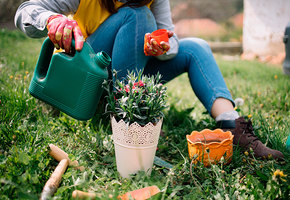 Как не отравиться, подкармливая растения на даче