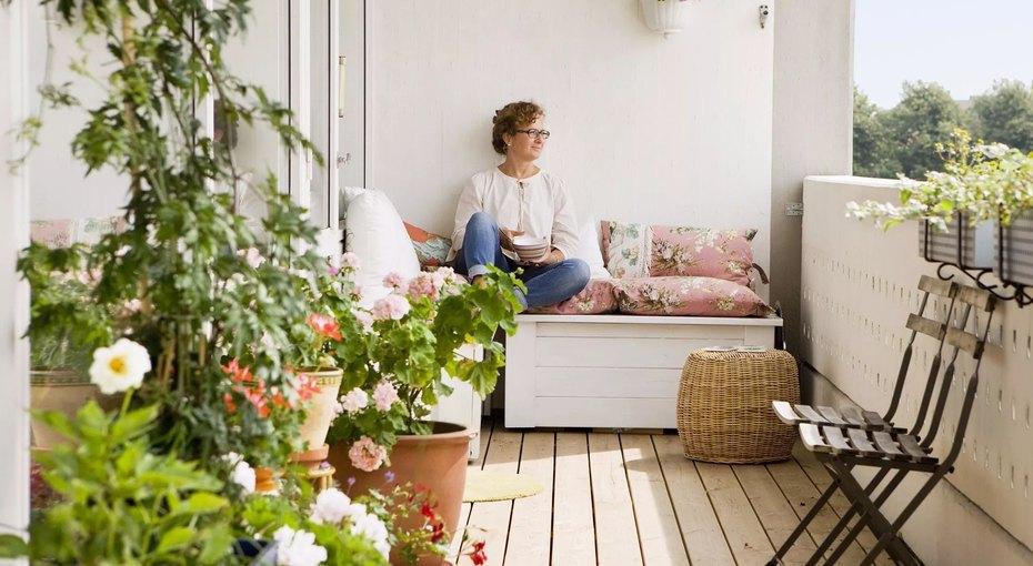 Спальня, гостиная, ванная, кухня: выбираем идеальное растение длякаждой комнаты