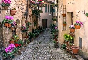 Лучше, чем отпуск: 3 европейских городка, которые решили доплачивать за переезд