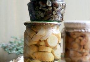 Классический рецепт маринованных грибов. Проверено временем