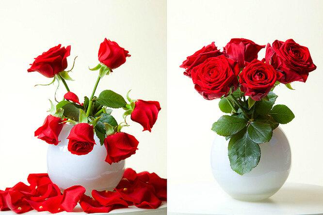 5 способов сохранить подаренные цветы свежими