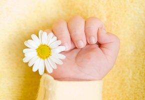Власти Китая подтвердили рождение третьего генно-модифицированного ребенка