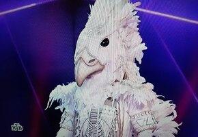 Шок на шоу «Маска»: никто не угадал, кто прячется в образе Белого орла