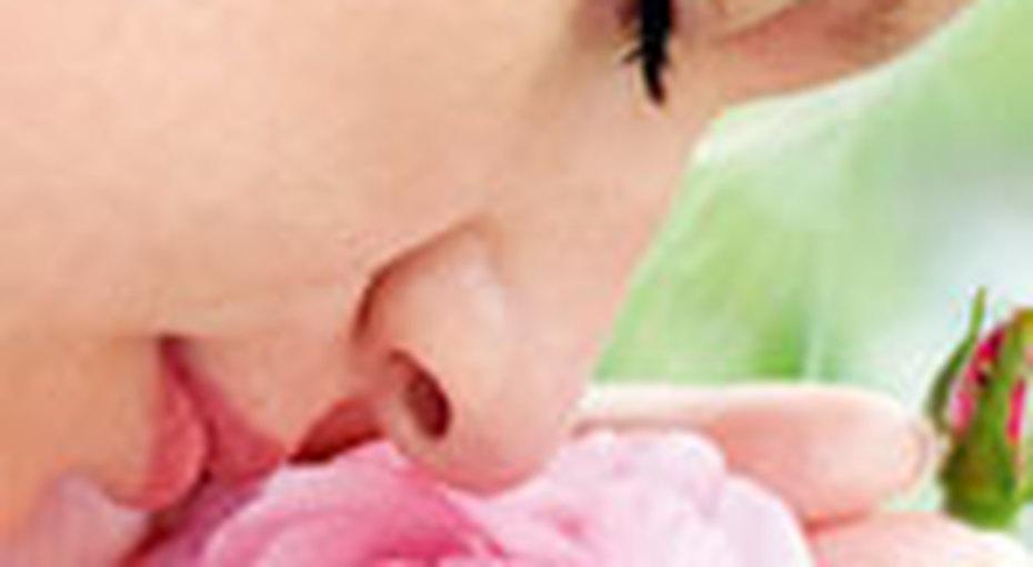 Лечение силой цветов