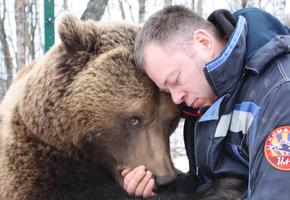Мужчина дважды спас медвежонка от смерти. И тот отблагодарил его