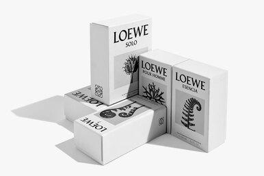 Парфюмерный бренд LOEWE Perfumes представил новую концепцию