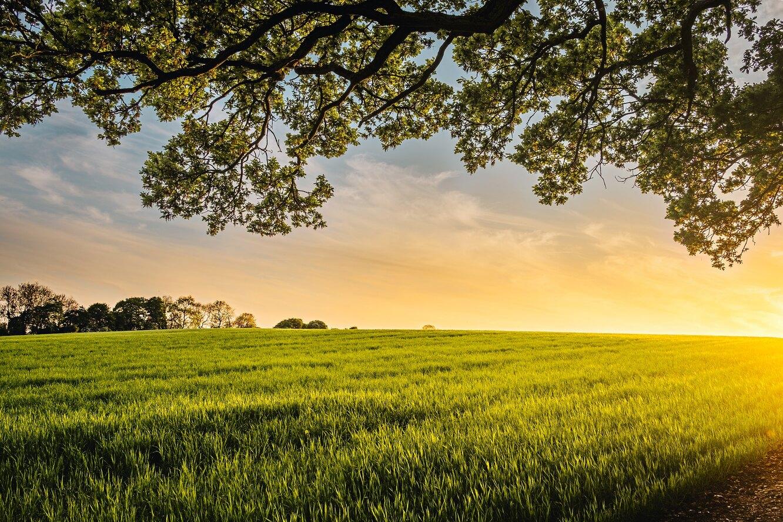 деревня, пейзаж, долина, ферма