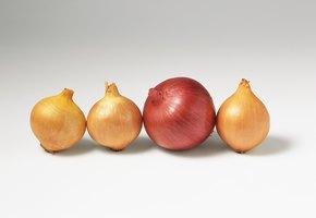 12 лайфхаков с луком, которые пригодятся не только на кухне