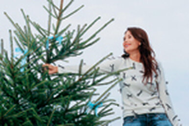 Разбираем  новогоднюю елку