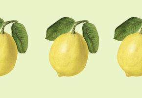 Лимонные корки: 14 необычных применений продукта, который мы обычно выбрасываем