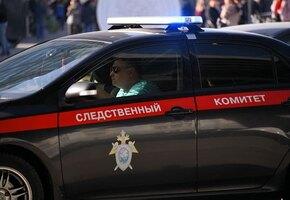На Алтае школьницы надругались над 11-летней девочкой. Одна из них задержана