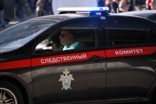 На Алтае школьницы надругались над11-летней девочкой. Одна изних задержана