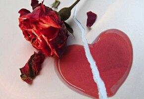 Путь к сердцу: жених отменил свадьбу и обручился с другой из-за баранины