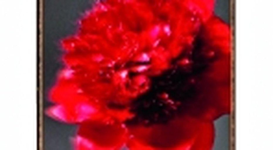 Арт-проект «звезды как цветы»