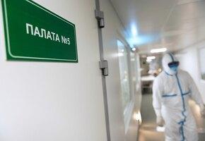 Вирусологи выяснили, чем чревато одновременное заражение гриппом и COVID-19
