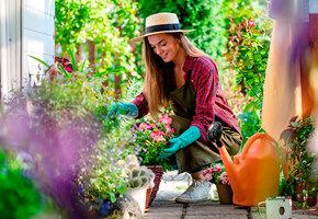 Растения против вредителей: бархатцы, мята и еще 7 цветов, которые защитят ваш сад