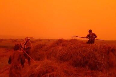 «Как будто апокалипсис»: хроника сильных пожаров вЯкутии