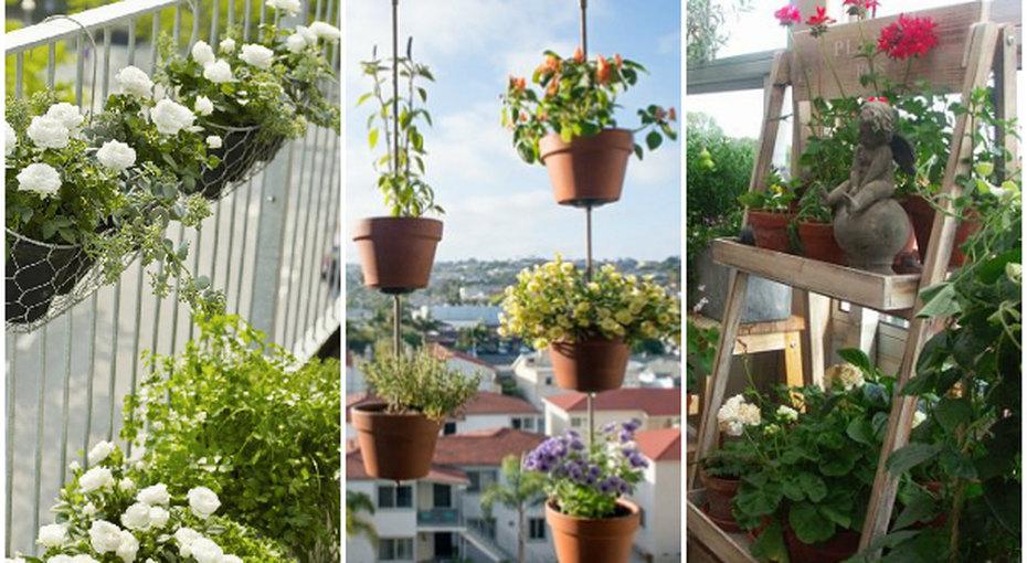 Превращаем балкон в... вертикальный огород!