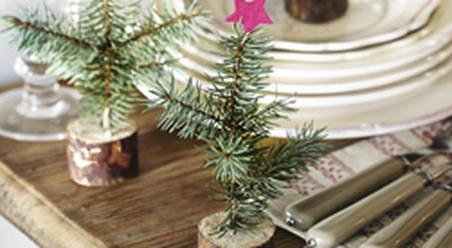 Мини - елки