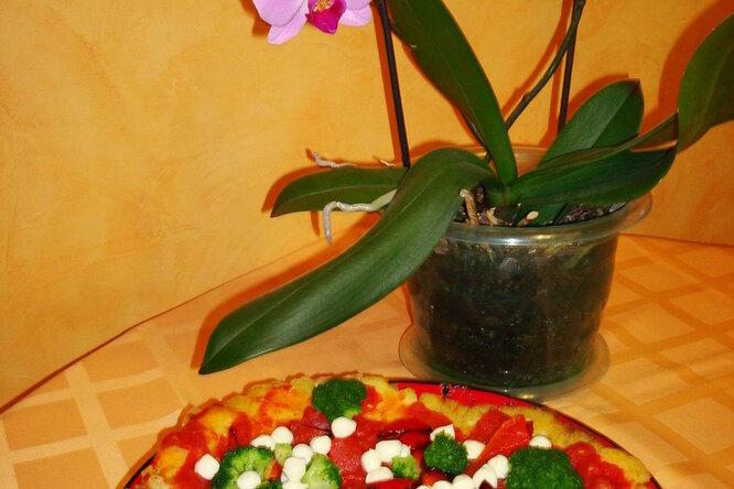 Картофельная пицца с брокколи и моцареллой