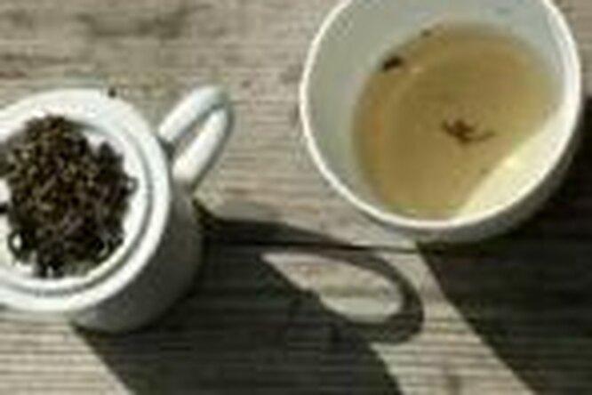 Зеленый чай спасет отрака