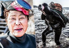 Храбрые русалки: тяжелая работа корейских ныряльщиц хэнё