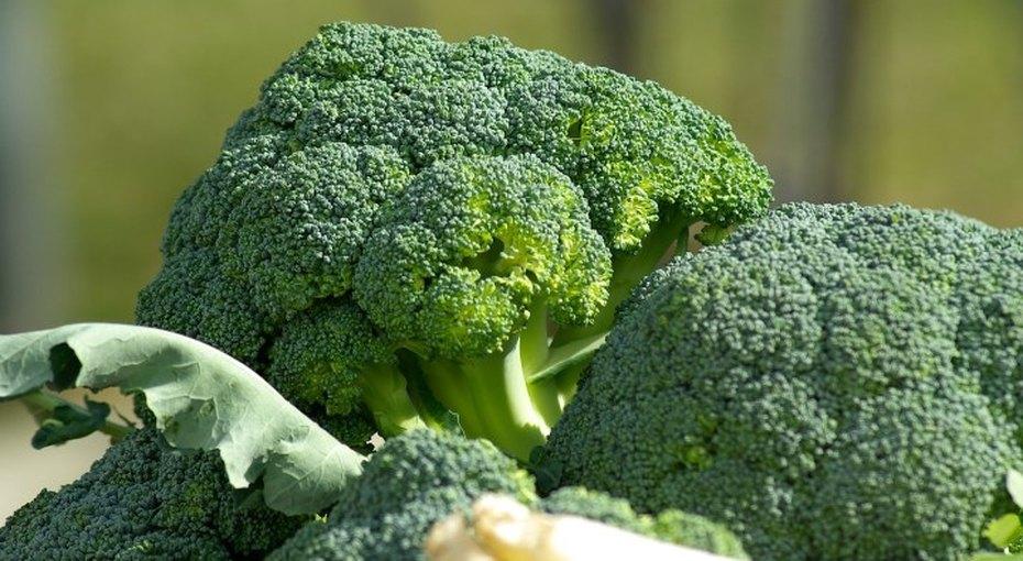 Как сохранить цвет зеленых овощей приварке? Несколько советов отпрофессионала