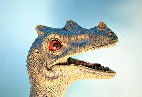 Заботились о детях: впервые найдено гнездо динозавров с яйцами и родителем