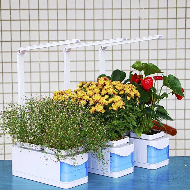 Многофункциональная умная установка для растений, 2 065 руб. 89 к. - 6 890 руб. 36 к.