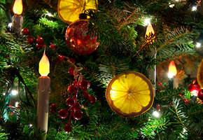 Это очень красиво! Сушеные апельсины на елку: мастер-класс (с видео)