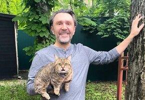 «Не смотрю теперь налево»: Сергей Шнуров восхитил поклонников совместными кадрами с молодой женой