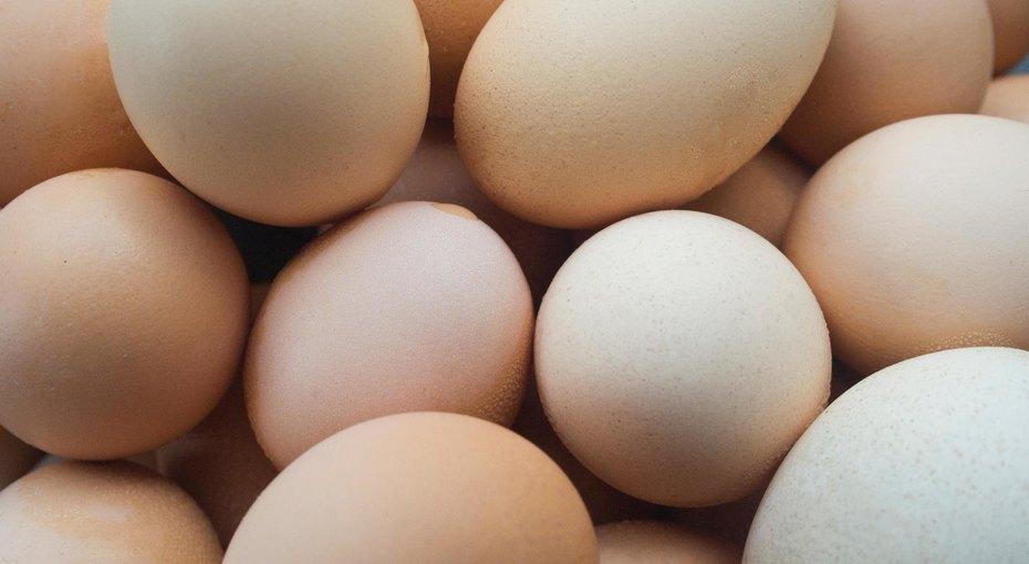 Как почистить сразу много яиц — иеще 9 лайфхаков ресторанных поваров