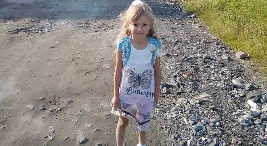 В Нижегородской области 400 человек сутки ищут пропавшую 5-летнюю девочку