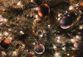 10 елок звезд, которые вас вдохновят: Рудковская, Подольская, Самойлова